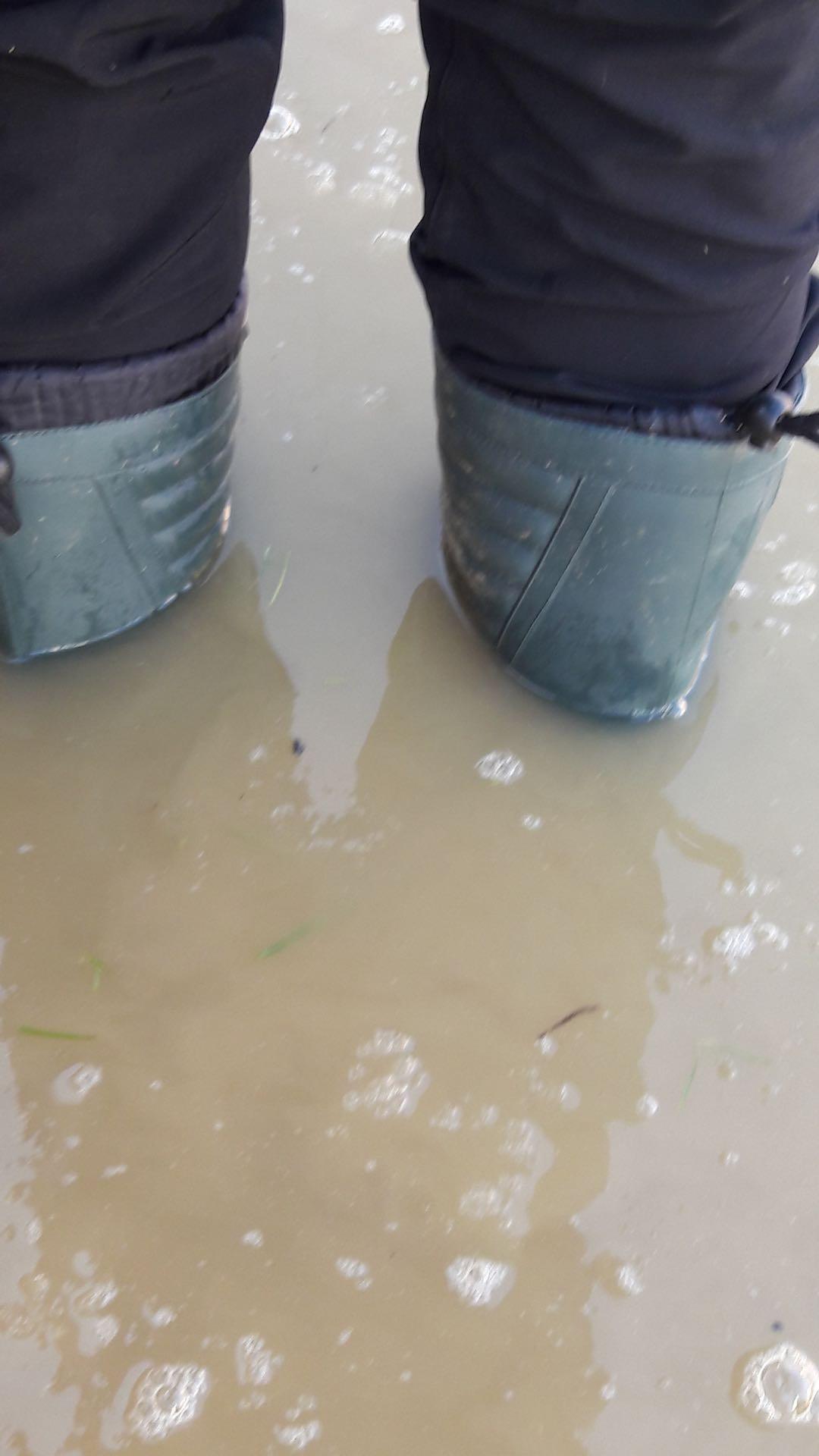 30 cm víz gyűlt fel az utcán, kb 40 cm-nél átlépi a kerti kapunk és elönti a házat.